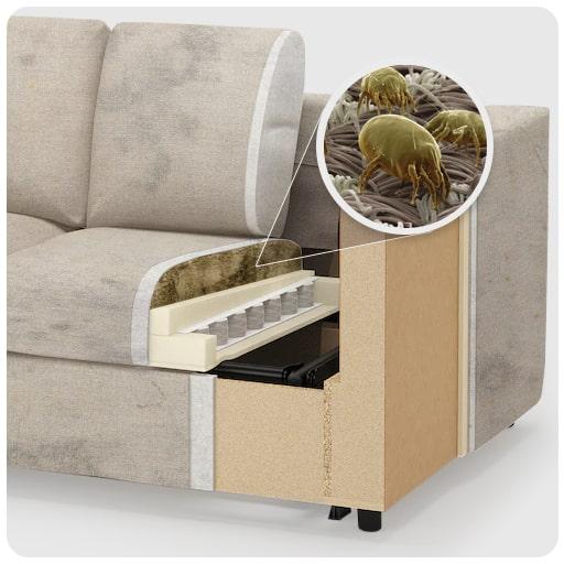 ácaros na parte interna do sofá